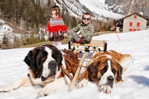 St.Bernard dogs of the Barry Foundation